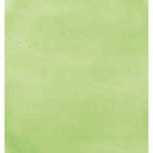 Gallery Glass 59 ml, lime green